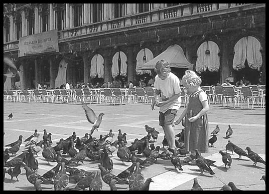 Young kids playing with the pigeons,